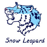 The growling blue snow leopard in a profile Stock Photos