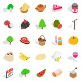 Grown food personally icons set, isometric style Royalty Free Stock Image