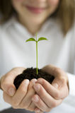 Growth. Beautiful teenager holding seedling in hands royalty free stock photography