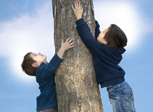 Growth. Two happy boys holding a tree Royalty Free Stock Photo