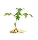 Growth - business concept Royalty Free Stock Images