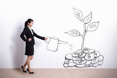 Growth concept. Businesswoman watering a plant that produces money tree Royalty Free Stock Photo