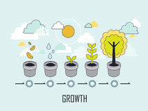 Growth concept. The growing process of a tree in line style Stock Photos