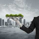 Growth and development concept. Businessman hand in glove holding silver tray with abstract trees on city background. Growth and development concept Royalty Free Stock Photography