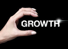 Growth icon Royalty Free Stock Photo