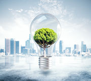Growth and idea concept. Absract lamp with tree inside on city background. 3D Rendering. Growth and idea concept vector illustration