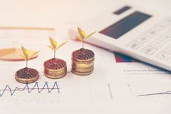 Growth plants on stack of coins on paper analyze financial graph with calculate. For investment business. Investment and Saving Concept Royalty Free Stock Photography