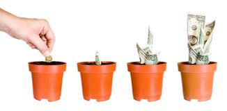 Growth of profitableness of capital investments Stock Image