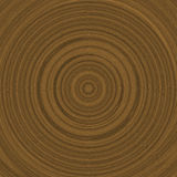 Growth rings illustration (dendrochronology) Stock Photo