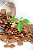 Growth in savings Royalty Free Stock Image