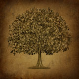 Growth tree symbol with grunge texture stock illustration