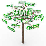 Growth Tree - Words on Branches Stock Photography