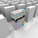 Growth Words One Box Best Product Competitive Edge Advantage. Growth and related words like increased, improvement, rising and expanding on one product box to vector illustration