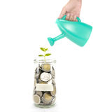 Growth of your money concept. With coin in the glass bottle Stock Photography