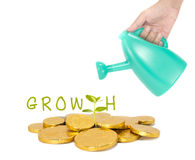 Growth of your money concept. With gold coin and young plant Stock Images
