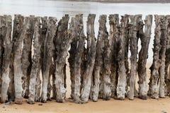 groyne的老木头 免版税库存照片