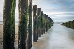 Groyne. A picture of a goyne in the north see, the netherlands Royalty Free Stock Photos