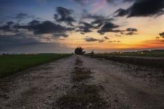 Groyne i piękna denna widok sceneria nad oszałamiająco wschód słońca obraz royalty free