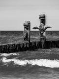 Groyne på kusten av Östersjön Royaltyfri Fotografi