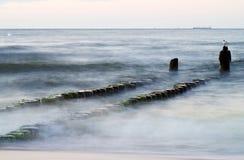 Groyne przy morzem bałtyckim Zdjęcia Stock