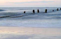 Groyne przy morzem bałtyckim Obraz Royalty Free