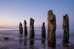 Groyne Stock Photos
