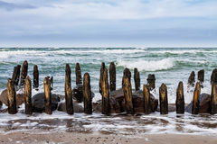 Groyne on shore Royalty Free Stock Photography