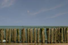 Groynes. On dutch beach-domburg Royalty Free Stock Images