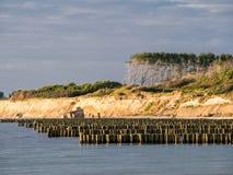 Groynes on the Baltic Sea coast Royalty Free Stock Image