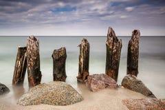 Groynes on the Baltic Sea Royalty Free Stock Image