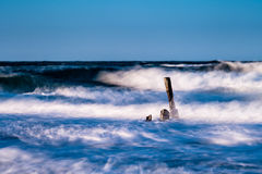 Groynes on the Baltic Sea Stock Images