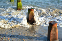 Groynes at a beach in West Sussex in England Stock Image