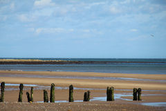 Groynes - Sandsend Beach Royalty Free Stock Image