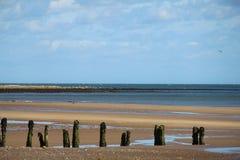 Groynes, Sandsend plaża - Obraz Royalty Free