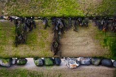 Groynes, With Seaweed and Stones Royalty Free Stock Photo