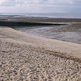 Groynes on the shingle beach Stock Photos
