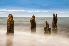 Groynes on shore Royalty Free Stock Images
