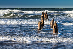 Groynes on shore Stock Images
