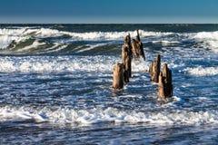 Groynes on shore Stock Images