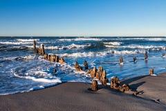 Groynes on shore Royalty Free Stock Photo