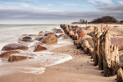 Groynes on shore of the Baltic Sea Stock Photography