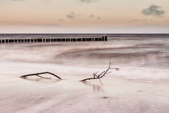 Groynes on shore of the Baltic Sea.  Royalty Free Stock Images