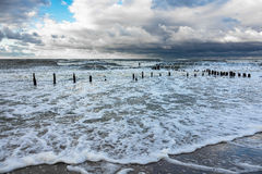 Groynes on shore of the Baltic Sea Royalty Free Stock Photography