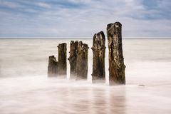 Groynes on shore of the Baltic Sea in the evening Stock Images