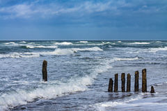 Groynes on shore of the Baltic Sea on a stormy day Royalty Free Stock Photos