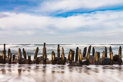 Groynes on shore of the Baltic Sea on a stormy day Stock Image