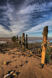 Groynes at Spurn Point Stock Image
