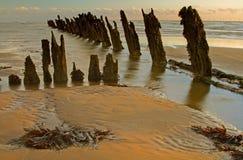 Groynes von Walney Insel lizenzfreie stockbilder
