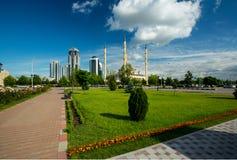 Grozny stad Royaltyfri Fotografi