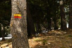 GRP som fotvandrar riktningsfläcken, målade på ett träd arkivbild